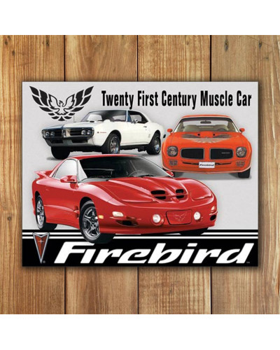 Plechová ceduľa Pontiac Firebird Tribute 40 cm x 32 cm w
